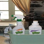 Mastoris Mansion cleans with Olive Green